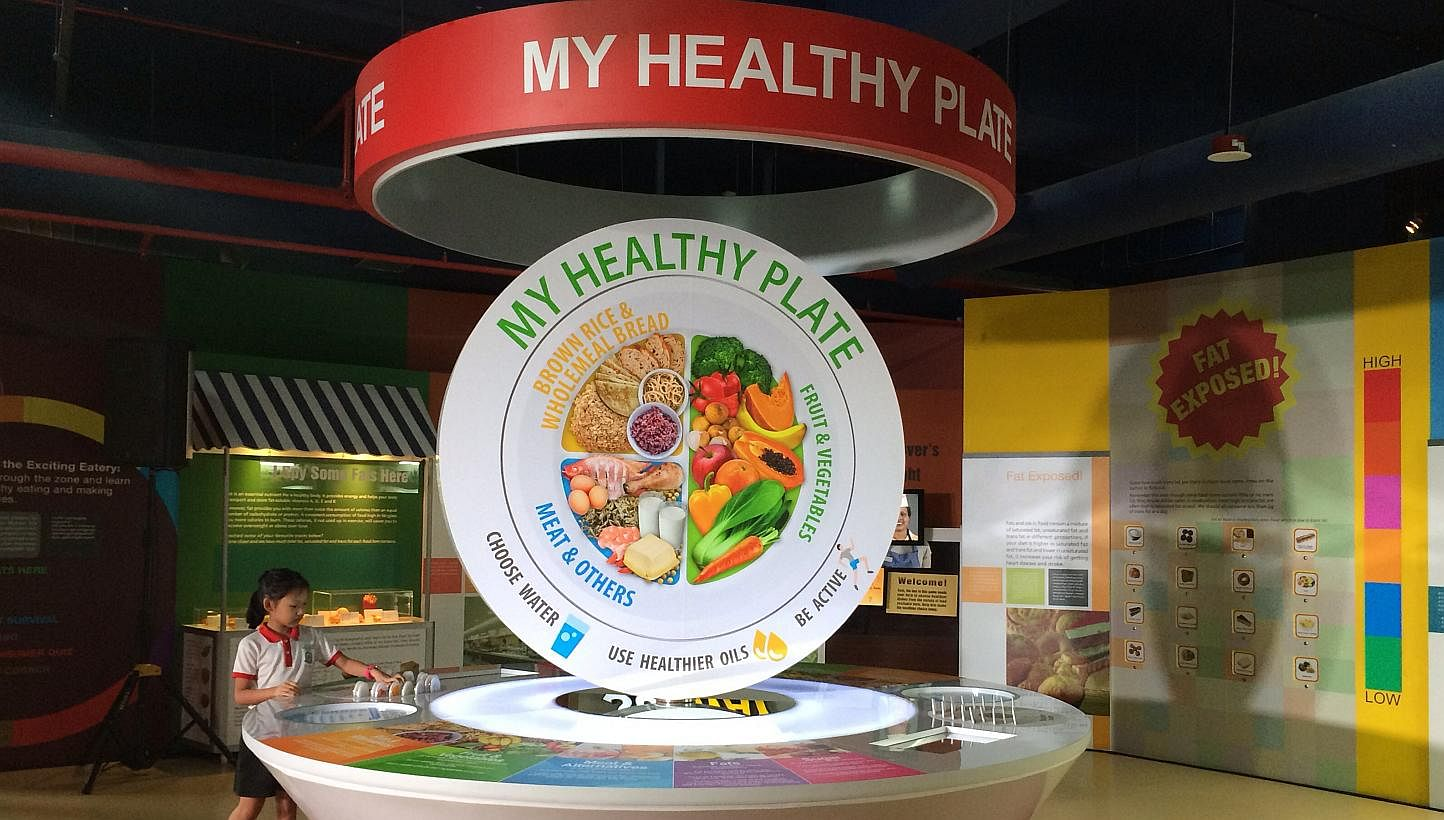 My Healthy Plate To Replace Food Pyramid In Singapore Textbooks Health News Top Stories The Straits Times