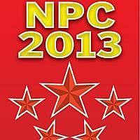ST 20130303 NPC2013LOGOXX 3550234m