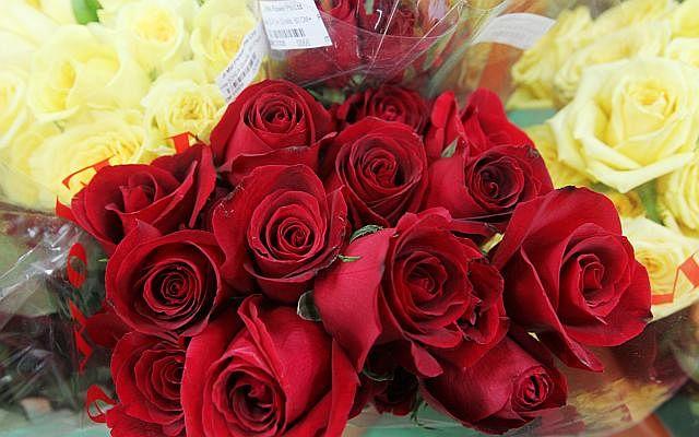 Dw banned valentines 141211