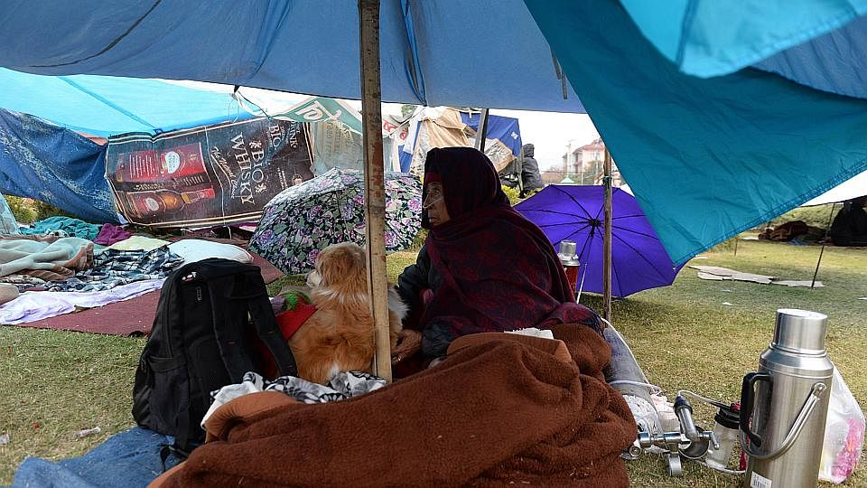 Dw tents 06