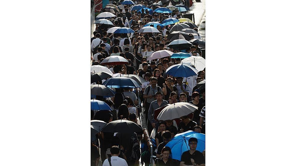 Embed12 umbrellas1 2803