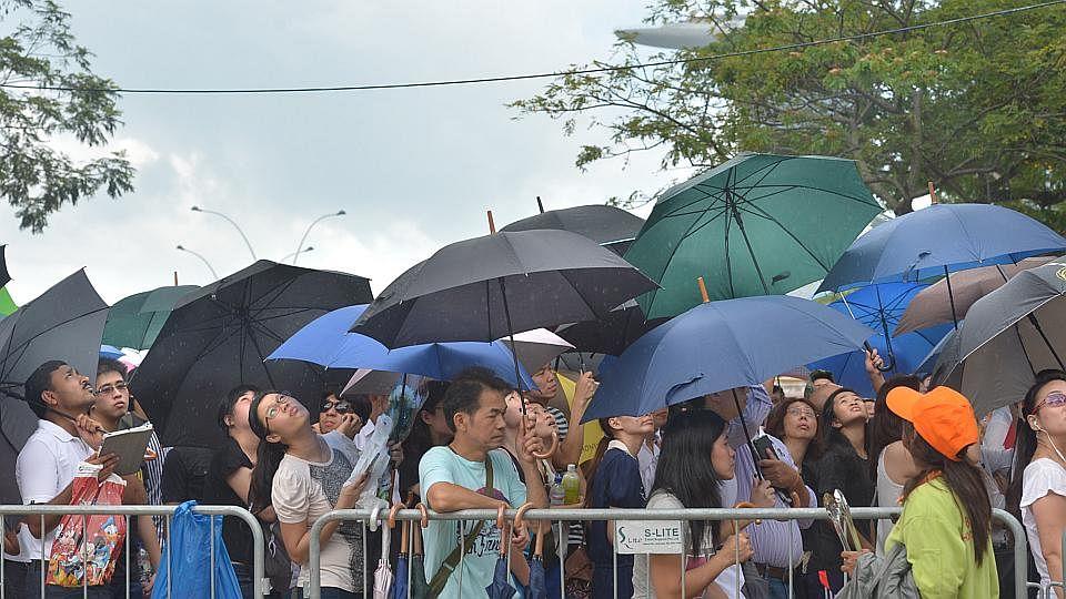 Embed5 umbrella 2803