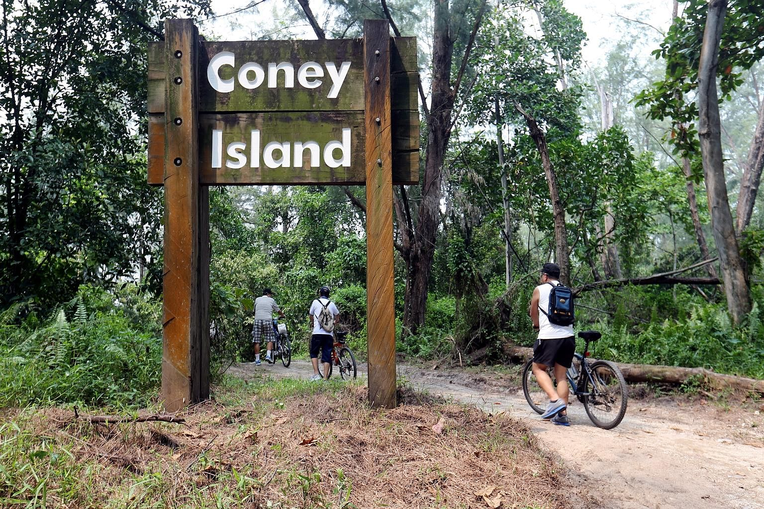 Instead of a housing development for the non-park portion of Coney Island, the writer recommends building eco-friendly structures, such as small low-rise chalets, camps and canoeing clubs, that can be integrated into the nature park area.