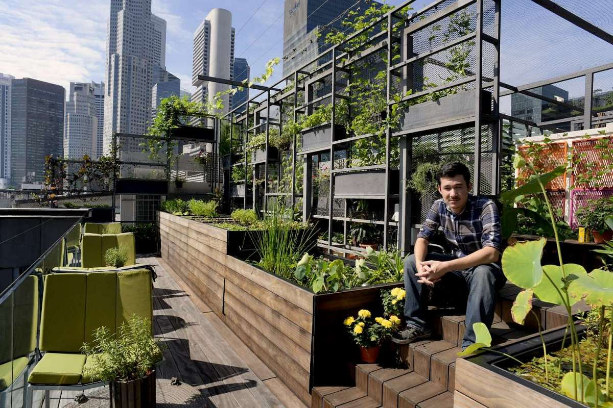 Urban Farming In Singapore Has Moved Into A New High Tech