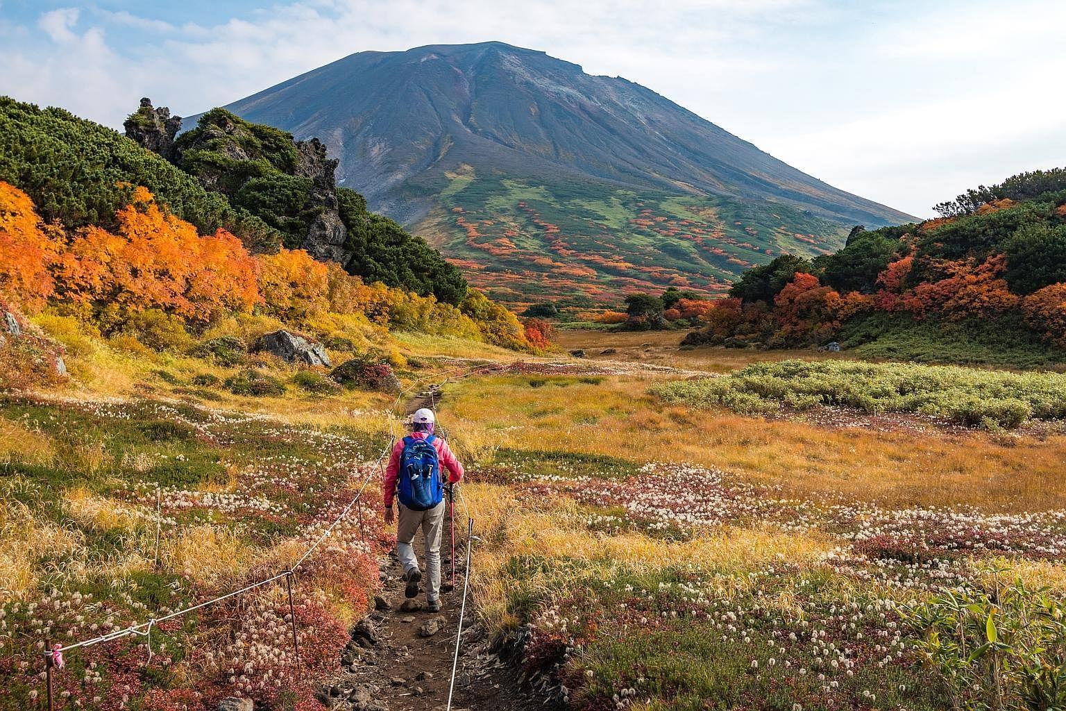 Hike among autumn colours on the trail towards Mount Asahi-dake in Daisetsuzan National Park.
