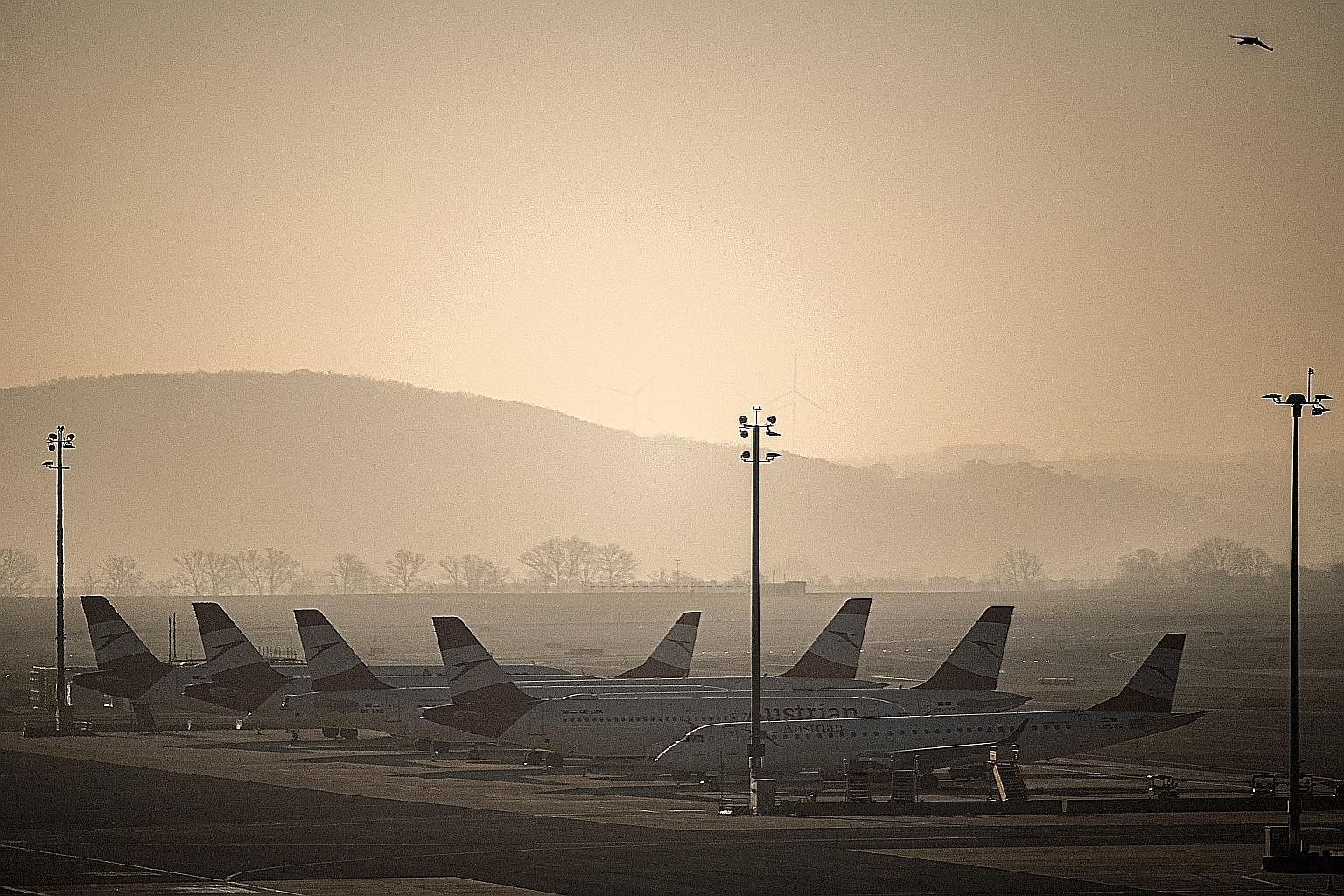 Grounded airplanes of Austrian Airlines parked at the Vienna International Airport last week. Iata's updated report notes that beyond the top 30 players, all other airlines have weak balance sheets, high debt and barely enough cash to cover three mon