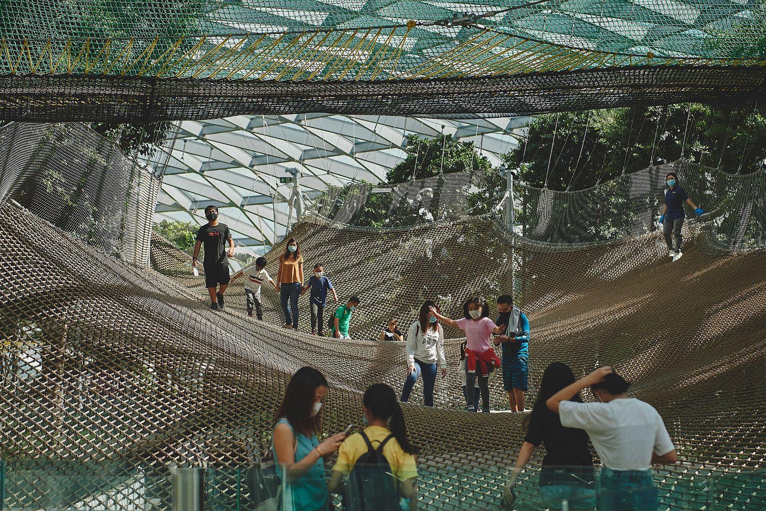 Sky Nets, Canopy Park, Jewel Changi Airport