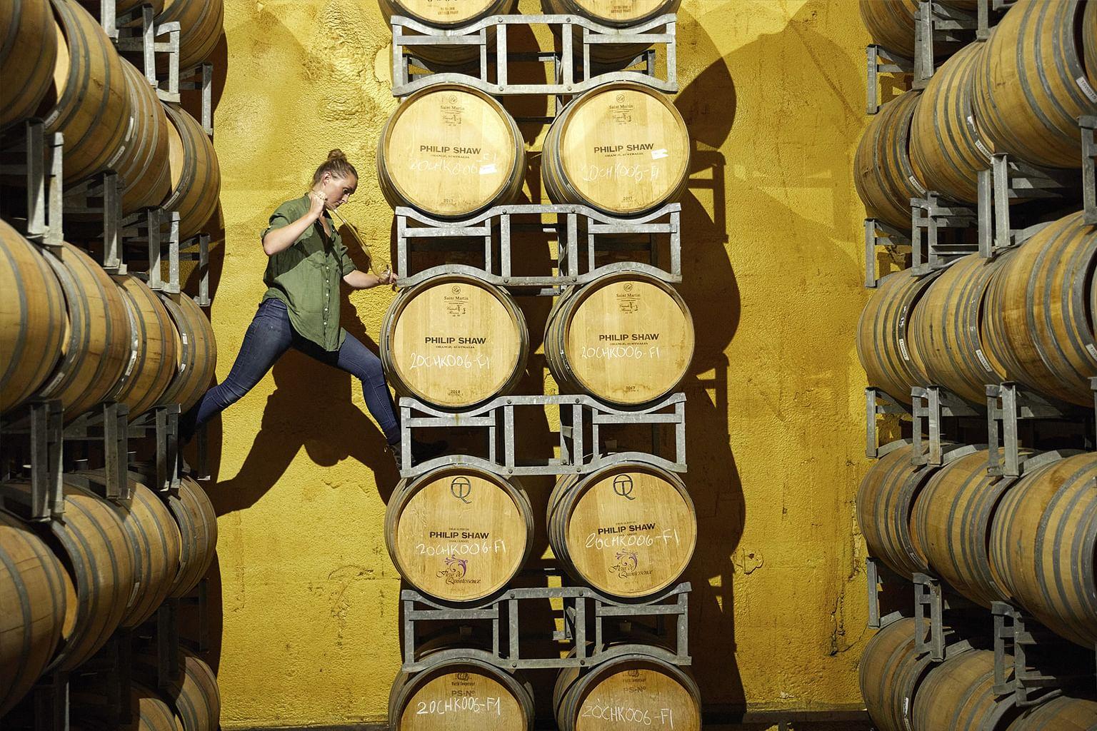 Orange, New South Wales, Australia, Wine, Philip Shaw Wines
