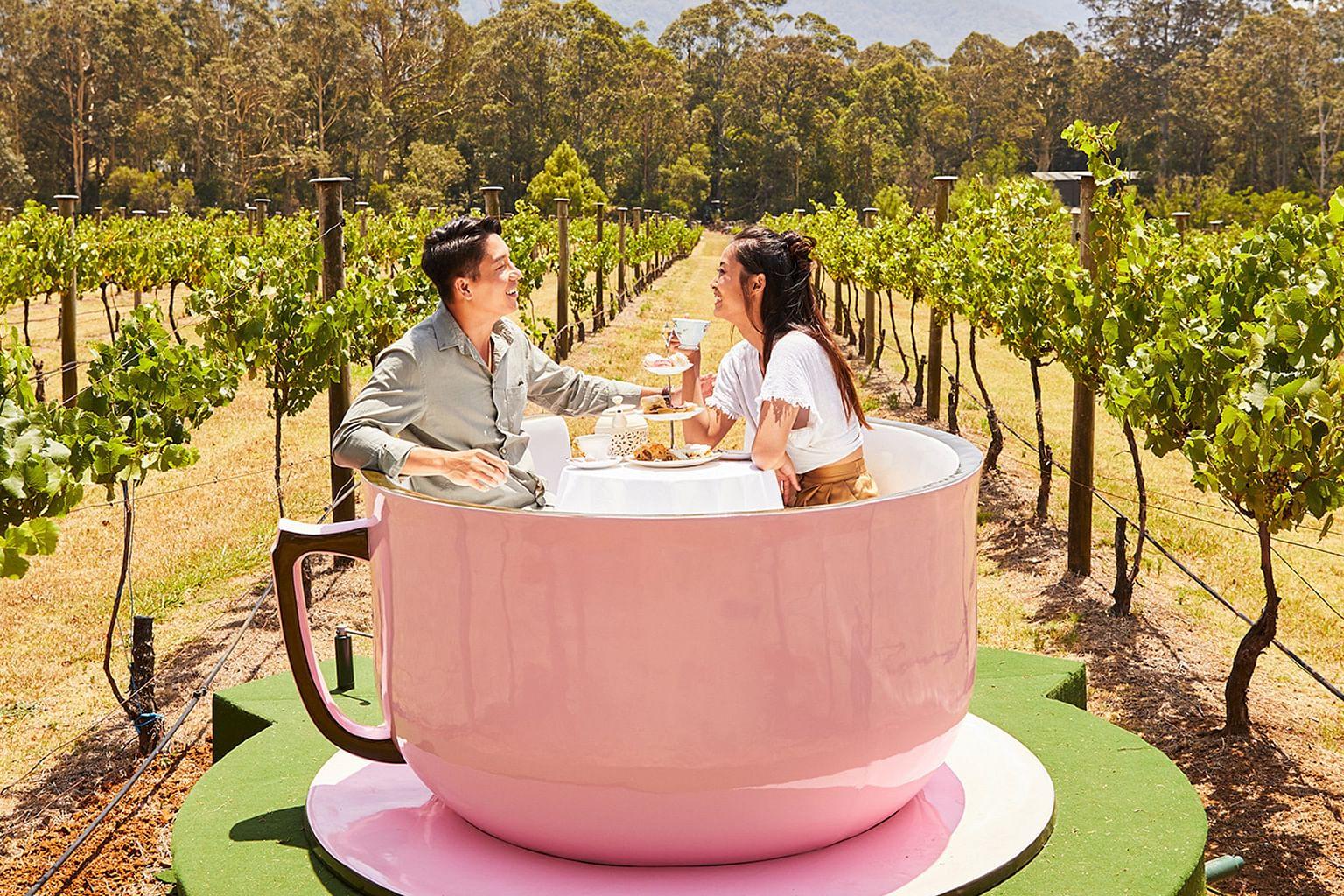 Shoalhaven Coast, New South Wales, Australia, Wine, Cambewarra Estate Winery
