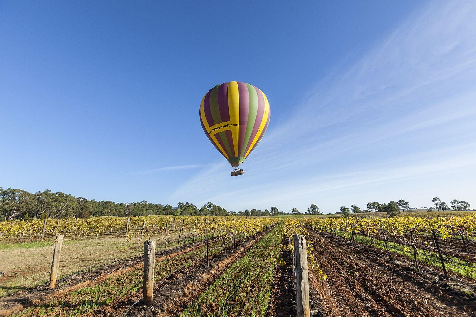 Hunter Valley, New South Wales, Australia, Wine, Balloon Aloft