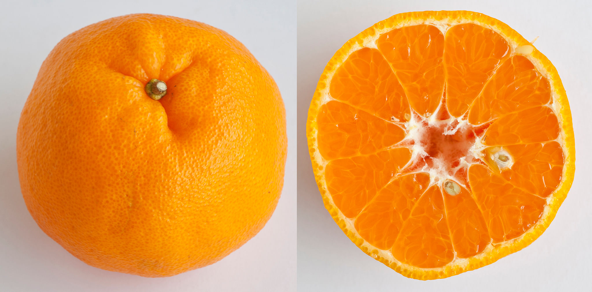 A guide to mandarin oranges: 11 types of citrus for the season ...
