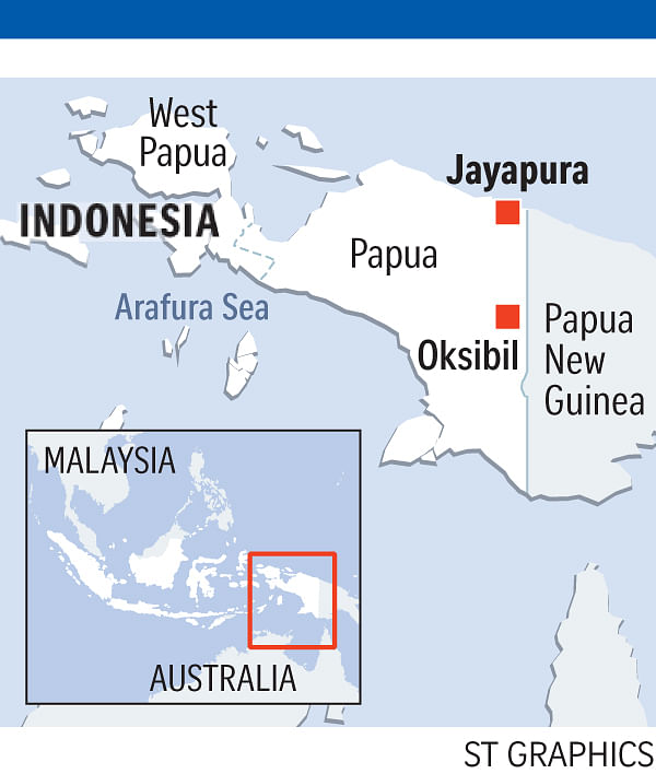 Indonesian plane 'may have crashed into mountain', SE Asia